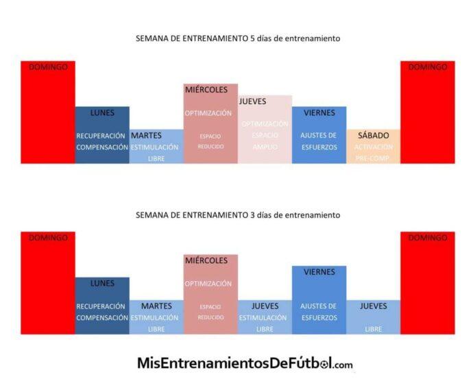 tarea microciclo estructurado