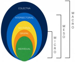 niveles del principio de alternancia horizontal con especificidad