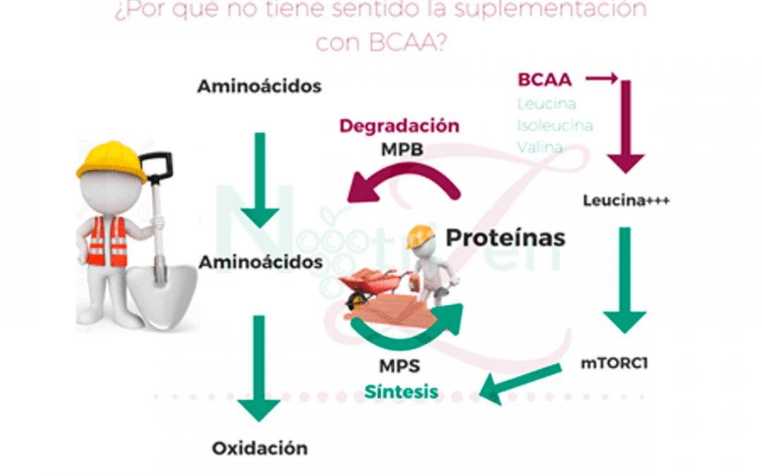¿Tiene sentido la suplementación BCAA para futbolistas?